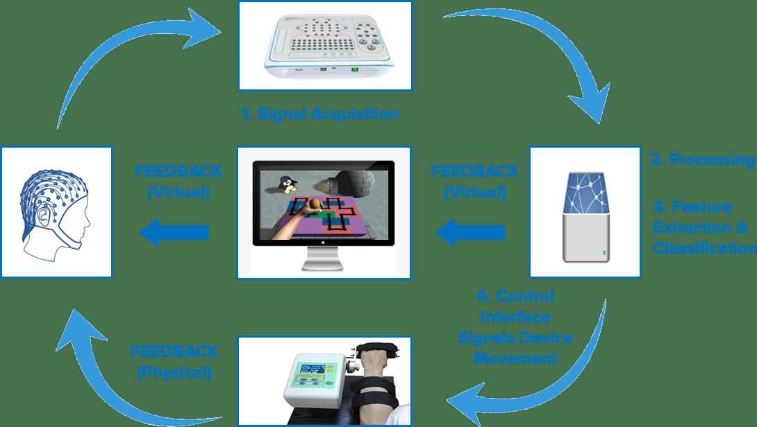 bci-principle-process